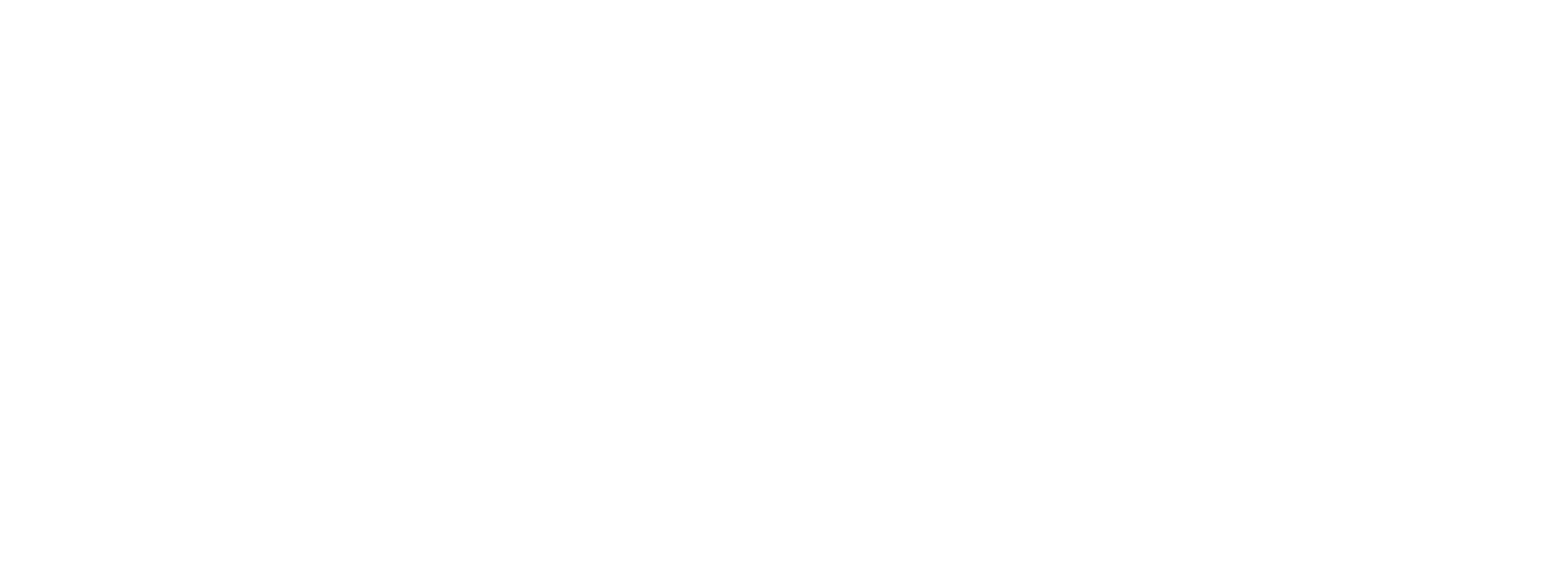 Logo Dubois Métal blanc
